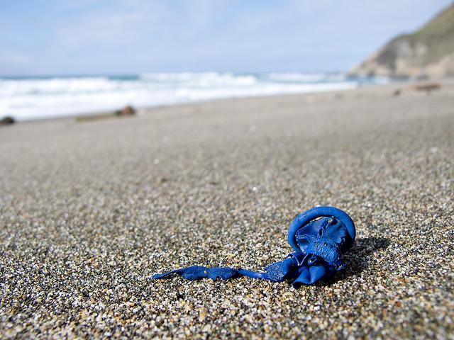 clean beaches campaign