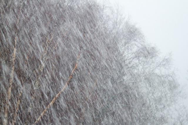 snow-shower-causes-transport-delays