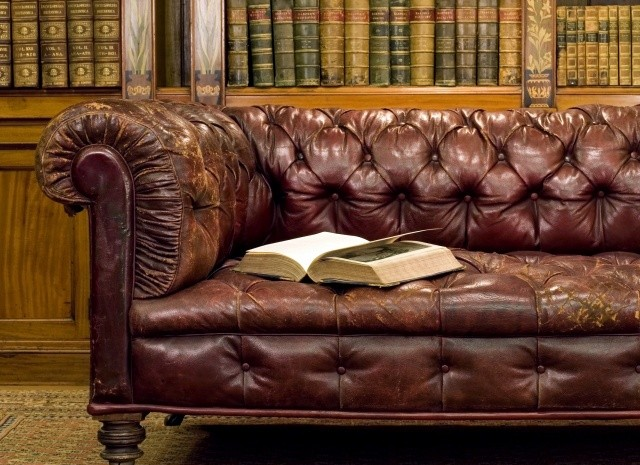 olive-oil-and-leather-sofa-cleaning