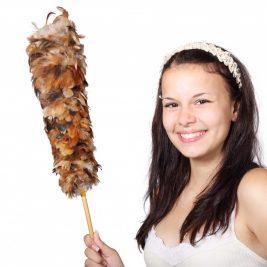 Female cleaner maid
